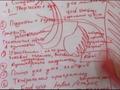 """Сюжет телекомпании """"Северный город"""" о креативной сессии в АРН"""